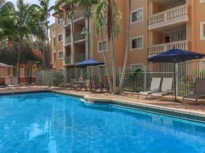 shamrock of sunrise fl apartments pool sunbrellas