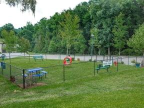 bark park overview