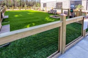 gated dog park