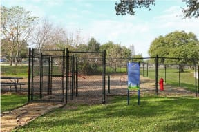 Dog park | The Park at Walnut Creek