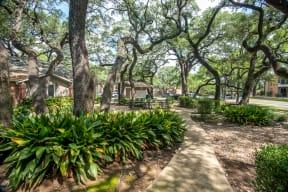Shaded courtyard | Village Oaks