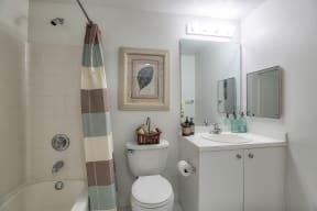 Bathroom  | Monterra at Bonita Springs