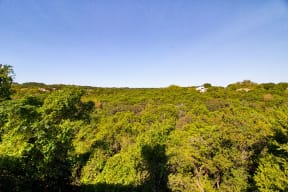Beautiful Hill Country Views   Channings Mark