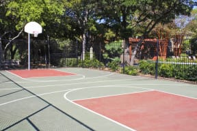 Basketball court   Northland at the Arboretum