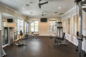Fitness center with weight machines  Ballantrae