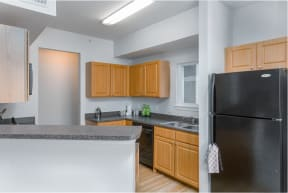 Kitchen with Electric Appliances