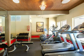 Fitness center | Museo