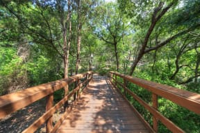 Running trail | Museo | Austin apartment