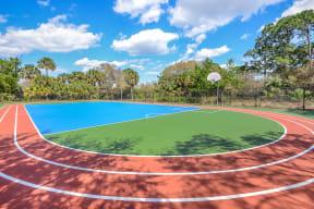 Sport court   Floresta