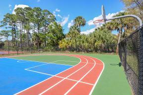 Basketball court   Floresta