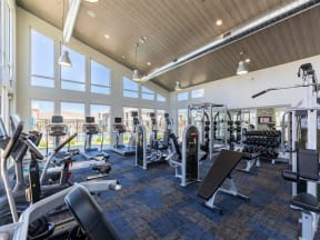 cardio and weight equipment in fitness center