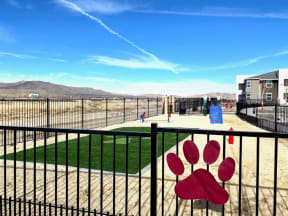 fenced dog park with grassy area