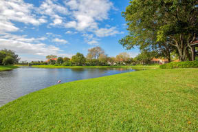 Take a walk by the lakeside | Village Place
