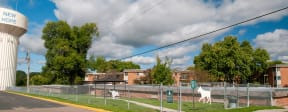 Spacious and fenced in dog park for your furry friend to enjoy.
