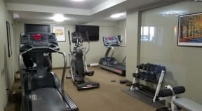 Fitness center with treadmill, ellipticals and dumbbell rack