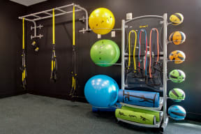 Fully Equipped Fitness Center at Shellbrook, North Carolina
