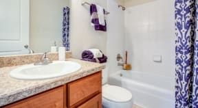 Bathroom with Shower Tub