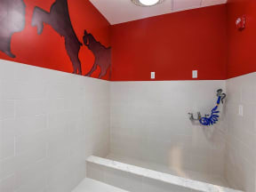 Convenient pet washing center for Coda Orlando apartment residents' pets' well-begin in Orlando