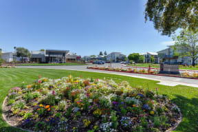 Outdoor Space with Flower Bed, Grass, Addison Ranch Sign, and Cars