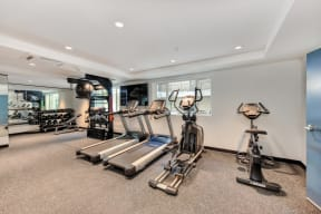 Fitness area with Excercise Bike, Treadmills, Ellipticals, Free Weights and Yoga Balls