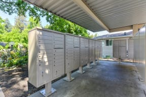 Covered Mailbox and package area