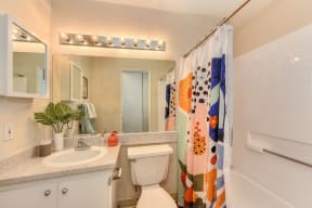 Brightly lit Bathroom with Sink, Toilet and Tub/shower. Green planT on countertop