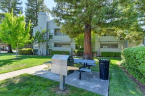 BBQ Area with Grills, Grass, Trees and Apartment Exteriors