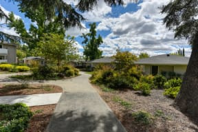 Community Walking Path and Landscaping with Trees, Shrubs and Blue Sky