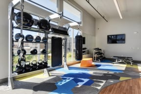 Gym with Wood Floor, Rug, Medicine Balls, Kettle Bells, Punching Bag, Wall Mounted Television, Workout Bench, Mirrors
