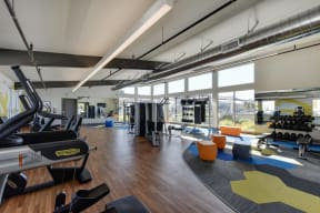 Gym with Hardwood Floor, Treadmills, Excercise Bike, Weight Machines, Full Windows with View of Exterior, and Hand Weight Rack
