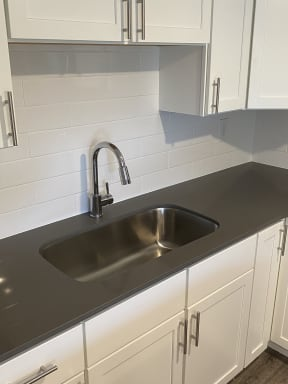 Kitchen with Single Vessel Sink and Goose Neck Faucet