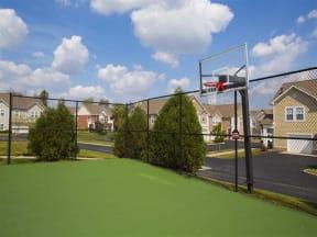 Half Court Basketball