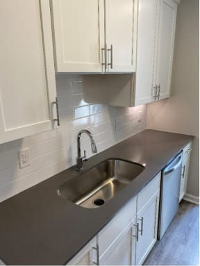 Deep Sink with Goose Neck Faucet
