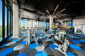 State-of-the-art gym
