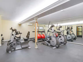 Apartments Los Gatos-El Gato Penthouse Fitness Center with Cardio Machines, Free Weights, and Exercise Balls