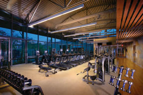 Irvine, CA Apartments for Rent - Astoria at Central Park West Fitness Center With Cardio Machines and Free Weights