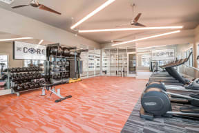 24-Hour Fully Equipped Fitness Center with TechnoGym Equipment