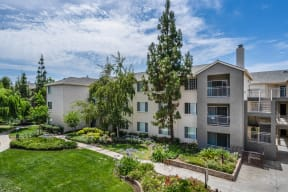 Lush Green Garden Landscaping at Pavona Apartments, San Jose, California