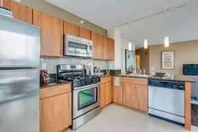 Upscale Stainless Steel Appliances at Flair Tower, Chicago, IL