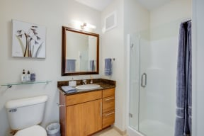 Glass-Enclosed, Stand-Up Shower at Flair Tower, Illinois, 60654