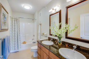 Spa-Inspired Bathrooms at Flair Tower, Illinois, 60654
