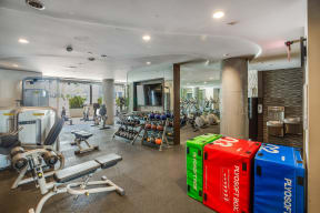 Spacious Fitness Center Filled with Natural Light at South Park by Windsor, 939 South Hill Street, CA