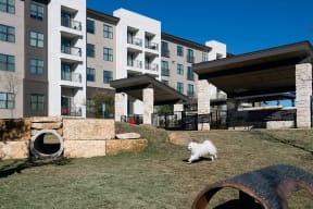 On-Site Pet Park at Windsor Oak Hill, Austin, 78735
