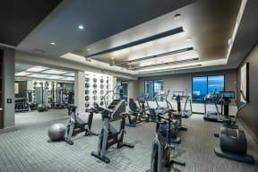 State-of-the-Art Fitness Center at Windsor Oak Hill, 6701 Rialto Blvd, TX