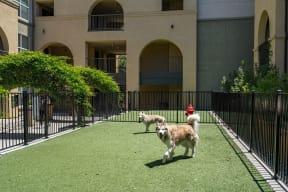 Pet Friendly Community at Villa Montanaro,203 Coggins Drive Pleasant Hill, CA 94523