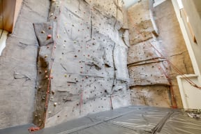 Indoor Rock Climbing Wall at The Aldyn, New York, New York