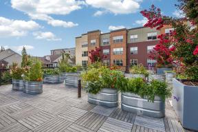 Urban Garden on Sky Deck at Platform 14, 97124, OR