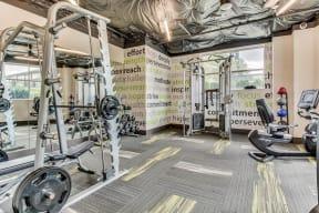 Free Weights at Tera Apartments, Kirkland, WA