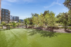 Pet-Friendly Community with Fenced Dog Park at Vox on Two, Massachusetts, 02140