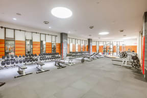 Fitness Center with Large Weight Lifting Area at The Aldyn, 60 Riverside Blvd., New York, NY 10069